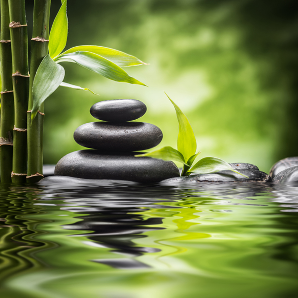 Mindfulness training image of stones